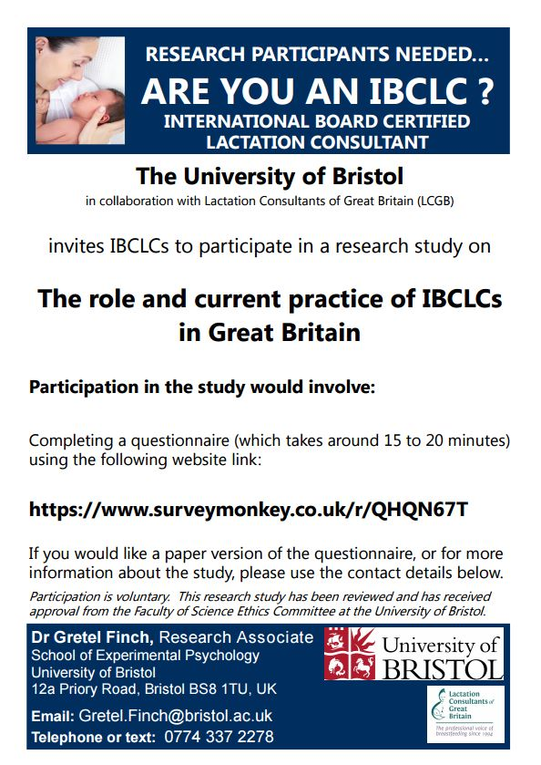 are you an IBCLC questionnaire