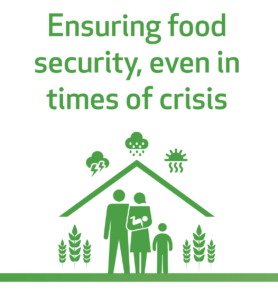 Ensuring Food Security